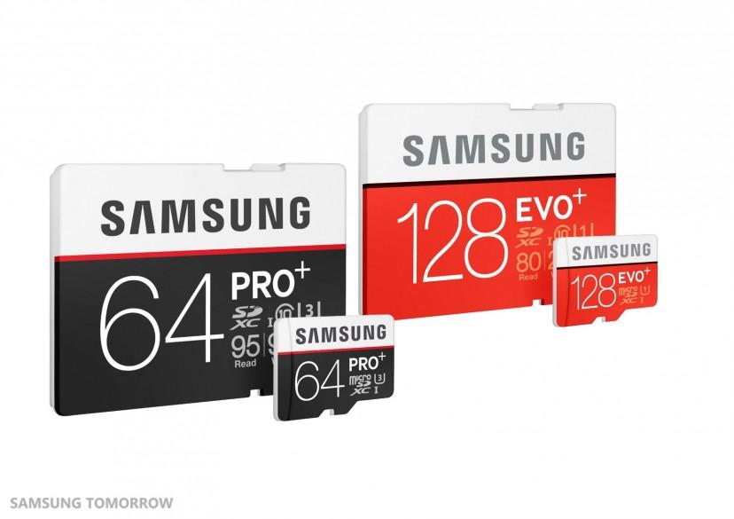 Plus SD Memory Cards